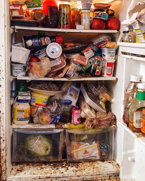 Cleaning Rotten Food from your Refrigerator or Freezer